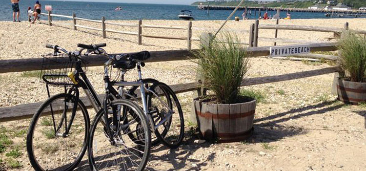 Fit Guide: The Hamptons